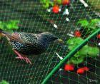Защитная сетка от птиц/ос